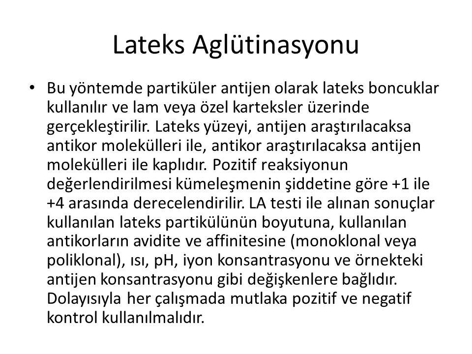 Lateks Aglütinasyonu
