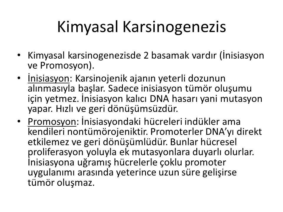 Kimyasal Karsinogenezis