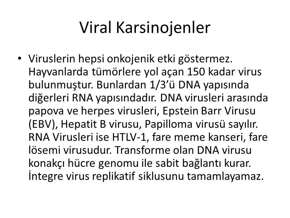 Viral Karsinojenler