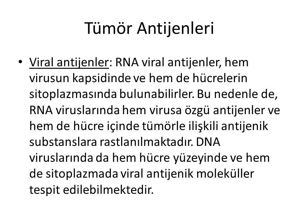 Tümör Antijenleri