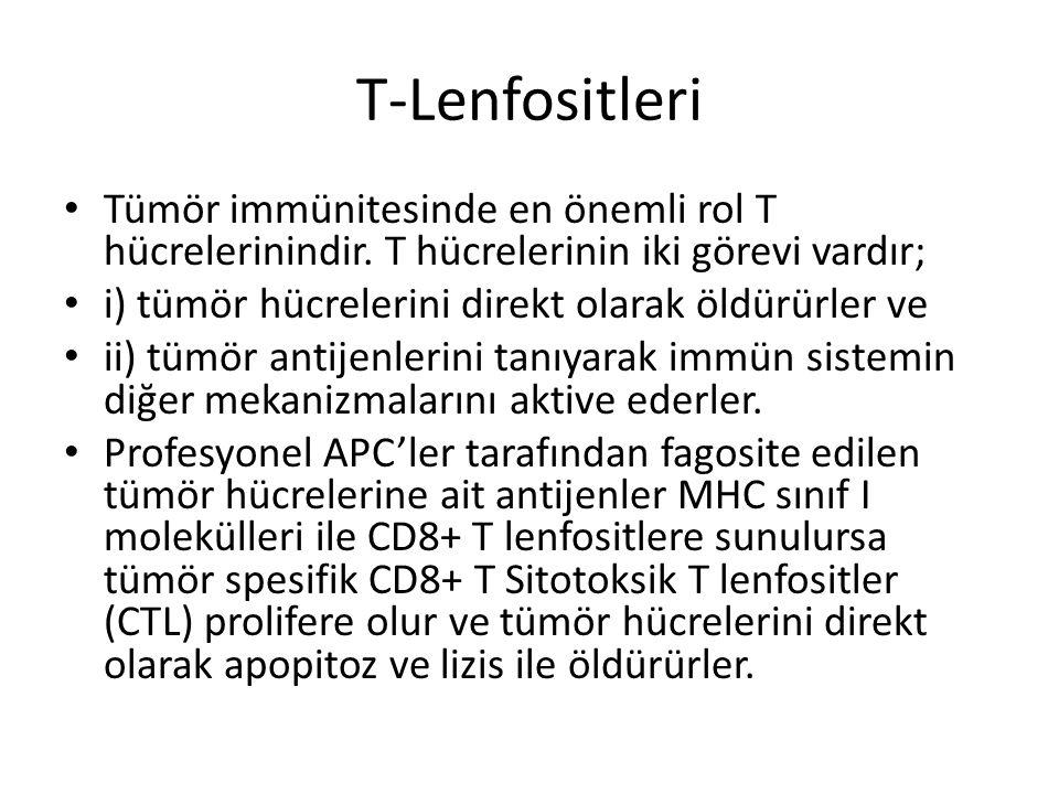 T-Lenfositleri Tümör immünitesinde en önemli rol T hücrelerinindir. T hücrelerinin iki görevi vardır;