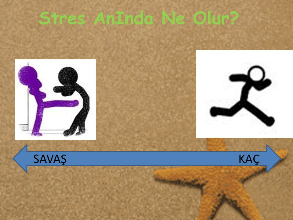 Stres AnInda Ne Olur SAVAŞ KAÇ