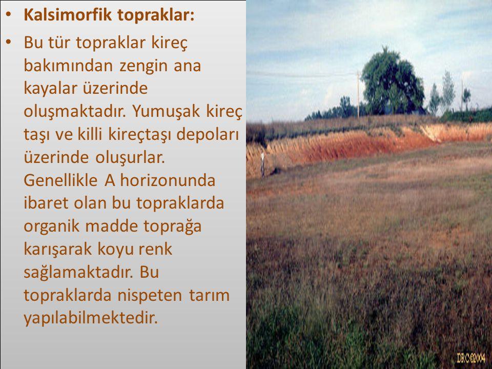 Kalsimorfik topraklar: