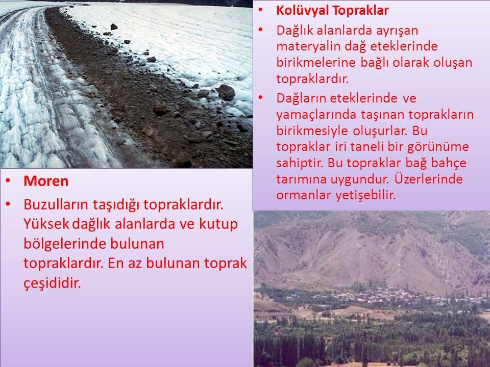 Kolüvyal Topraklar Dağlık alanlarda ayrışan materyalin dağ eteklerinde birikmelerine bağlı olarak oluşan topraklardır.