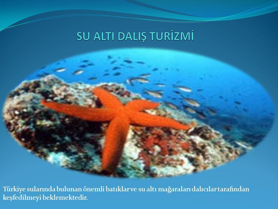 SU ALTI DALIŞ TURİZMİ Türkiye sularında bulunan önemli batıklar ve su altı mağaraları dalıcılar tarafından keşfedilmeyi beklemektedir.