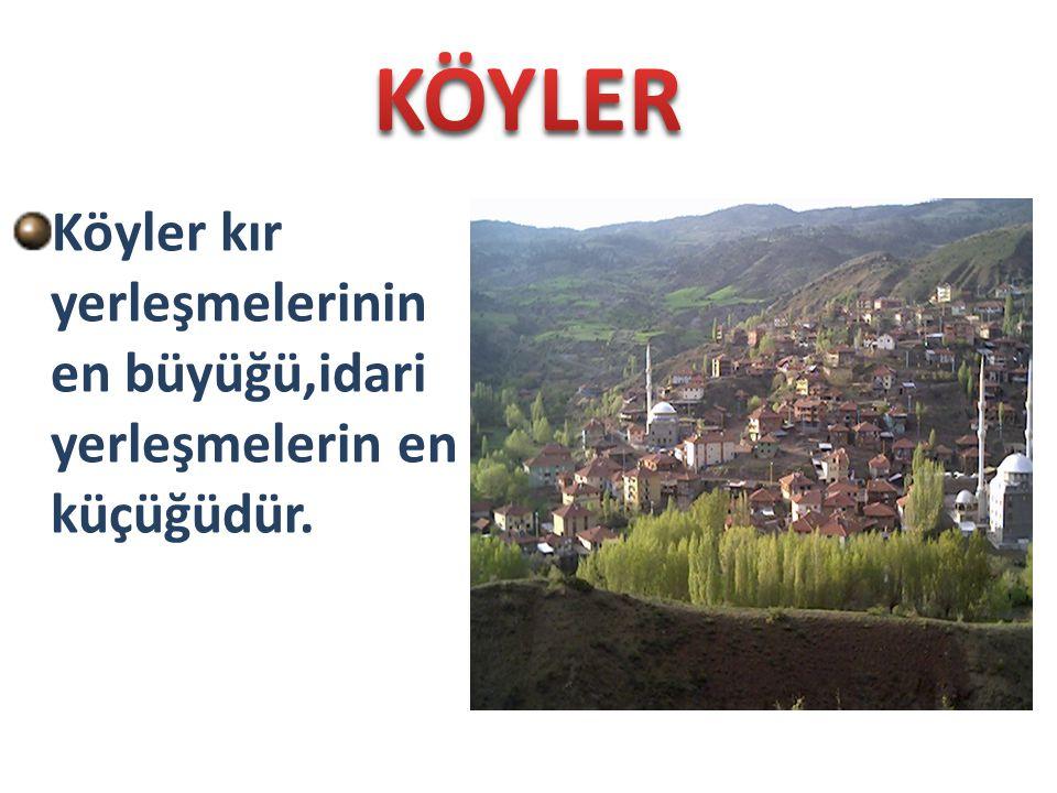 KÖYLER Köyler kır yerleşmelerinin en büyüğü,idari yerleşmelerin en küçüğüdür.