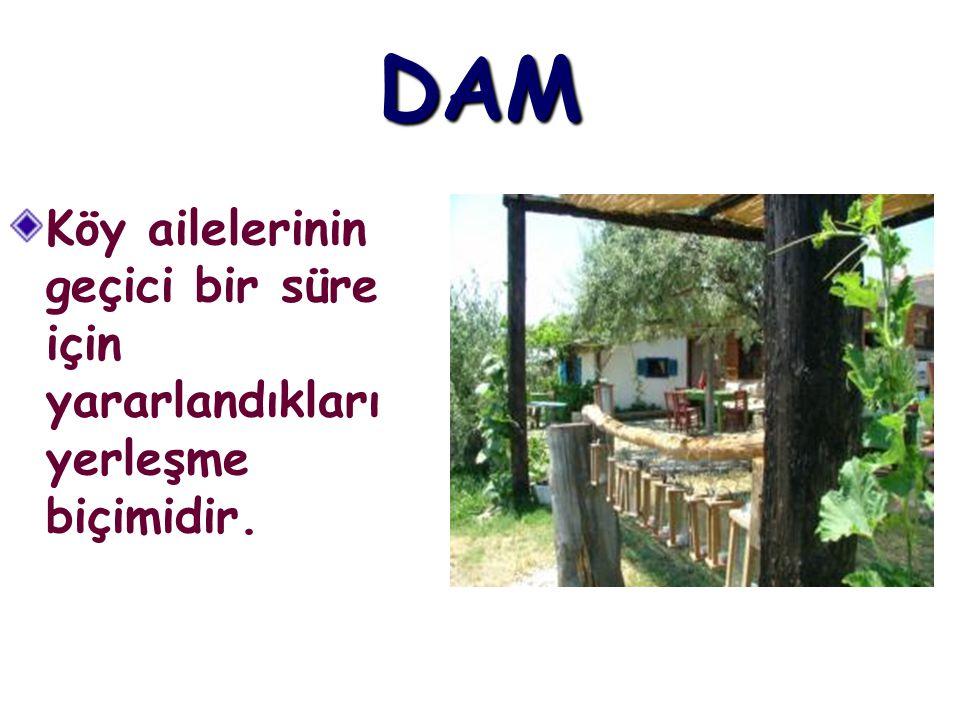 DAM Köy ailelerinin geçici bir süre için yararlandıkları yerleşme biçimidir.