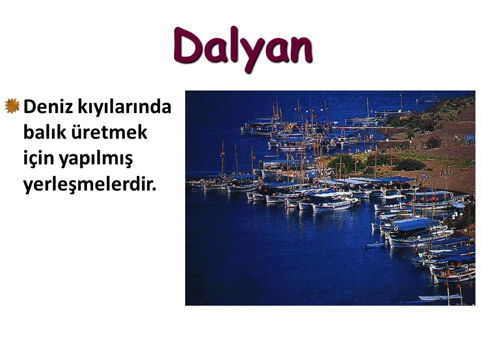 Dalyan Deniz kıyılarında balık üretmek için yapılmış yerleşmelerdir.