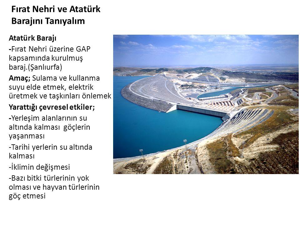Fırat Nehri ve Atatürk Barajını Tanıyalım