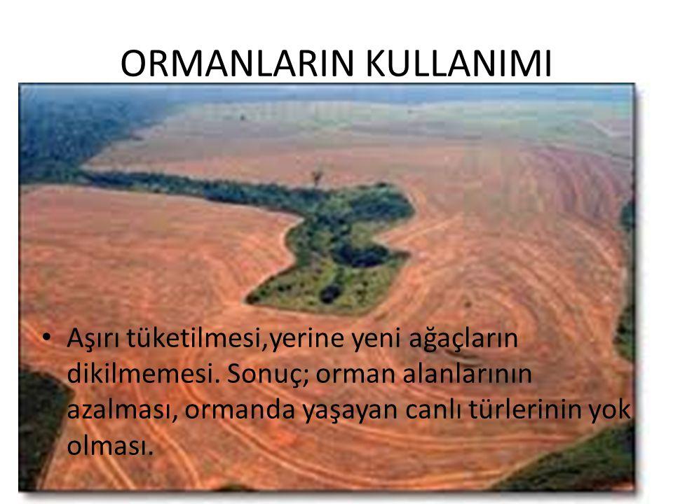ORMANLARIN KULLANIMI