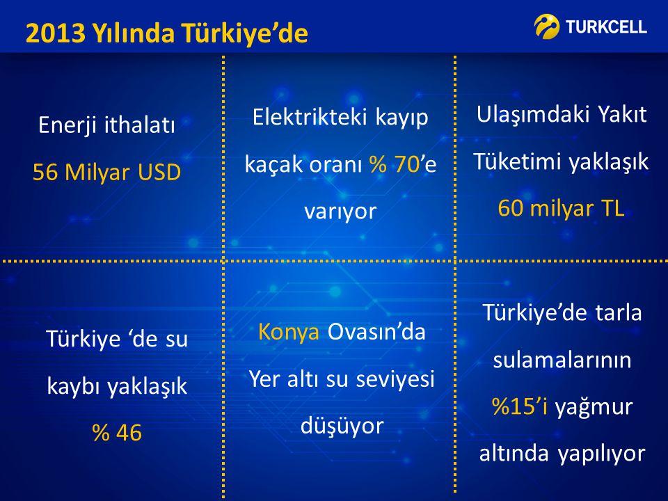 2013 Yılında Türkiye'de Ulaşımdaki Yakıt Tüketimi yaklaşık