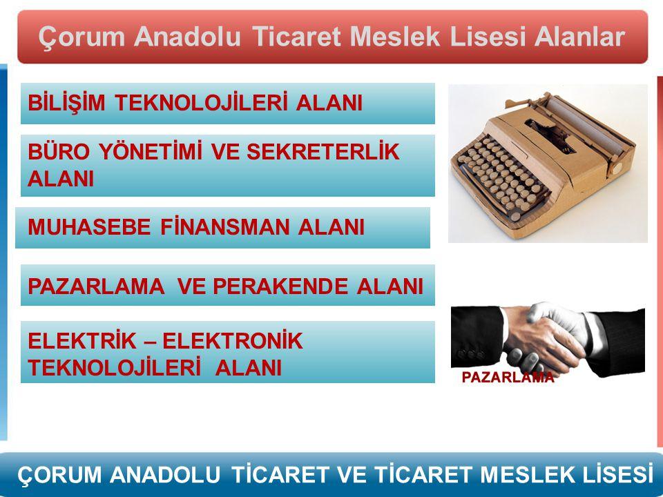 Çorum Anadolu Ticaret Meslek Lisesi Alanlar