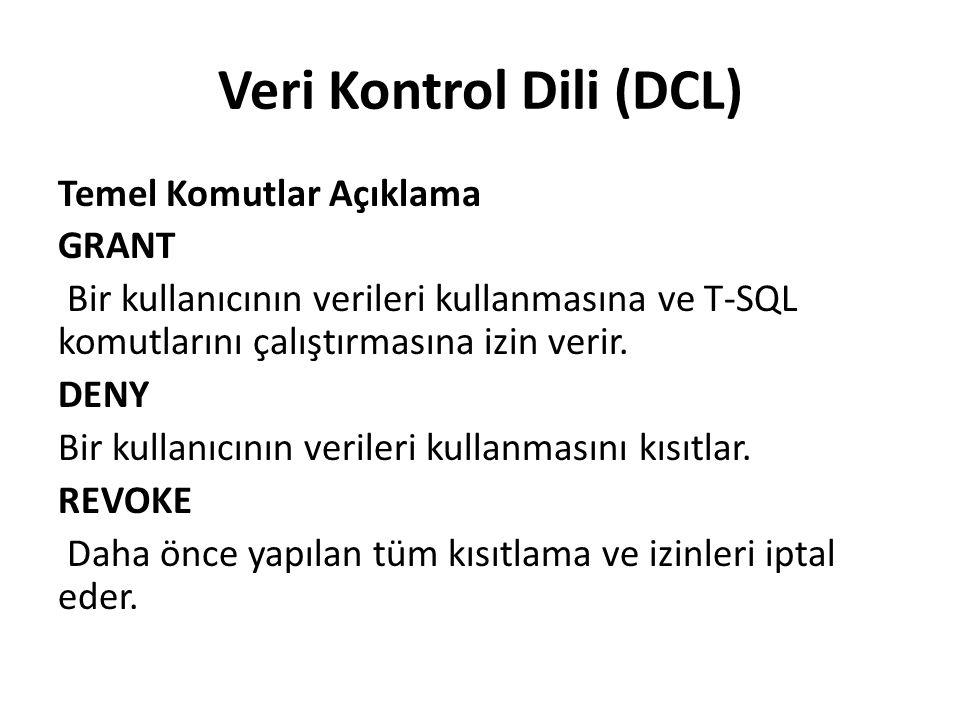 Veri Kontrol Dili (DCL)