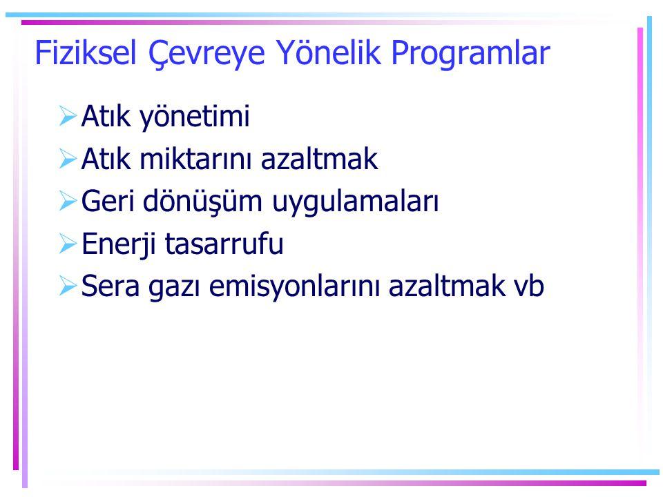 Fiziksel Çevreye Yönelik Programlar