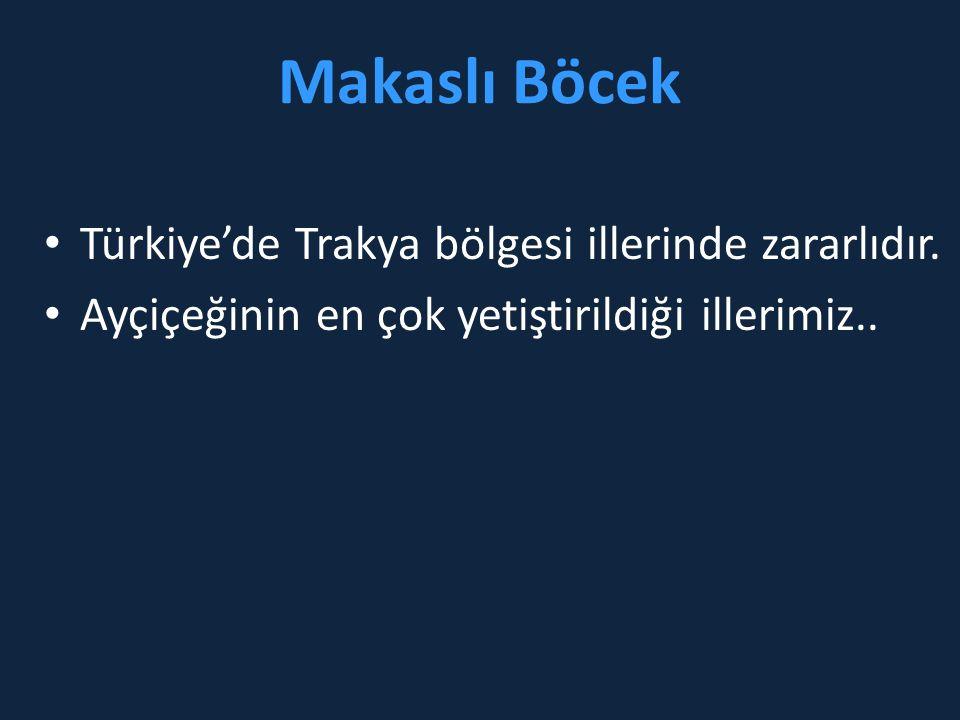 Makaslı Böcek Türkiye'de Trakya bölgesi illerinde zararlıdır.