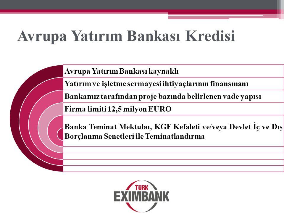 Avrupa Yatırım Bankası Kredisi
