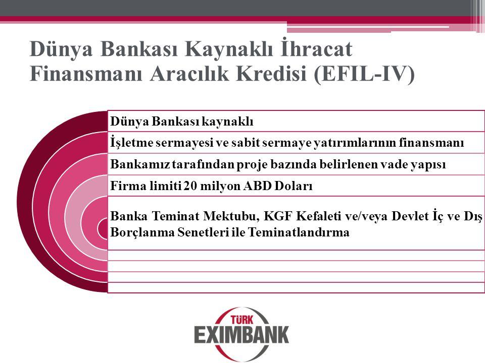 Dünya Bankası Kaynaklı İhracat Finansmanı Aracılık Kredisi (EFIL-IV)