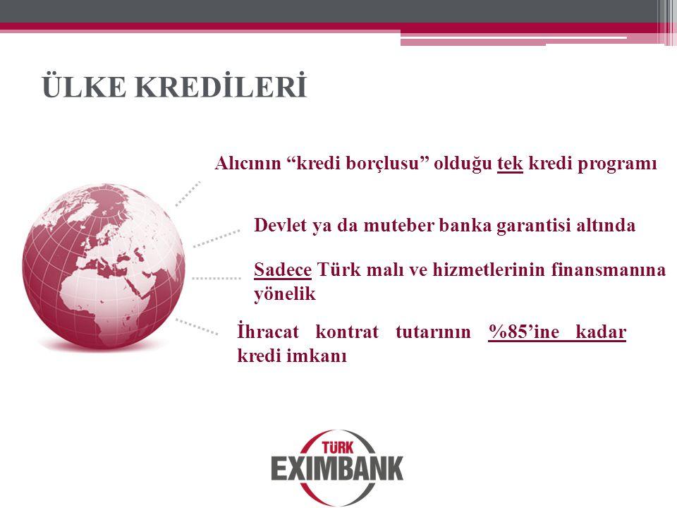 ÜLKE KREDİLERİ Alıcının kredi borçlusu olduğu tek kredi programı