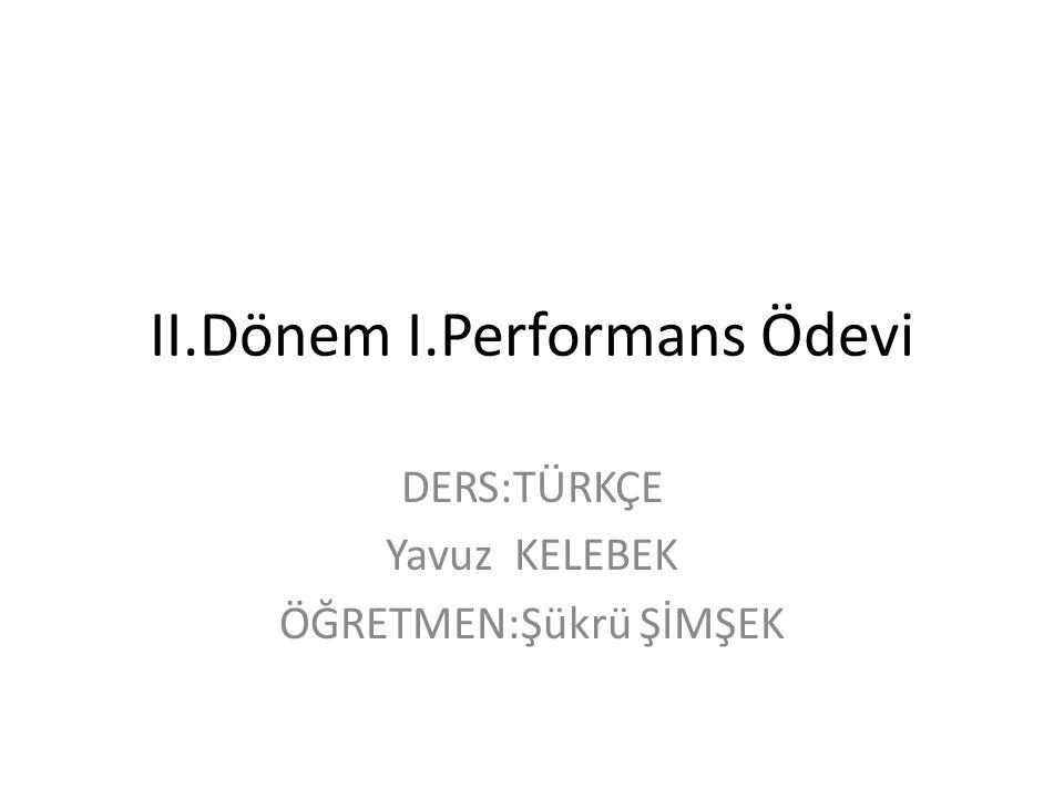 II.Dönem I.Performans Ödevi