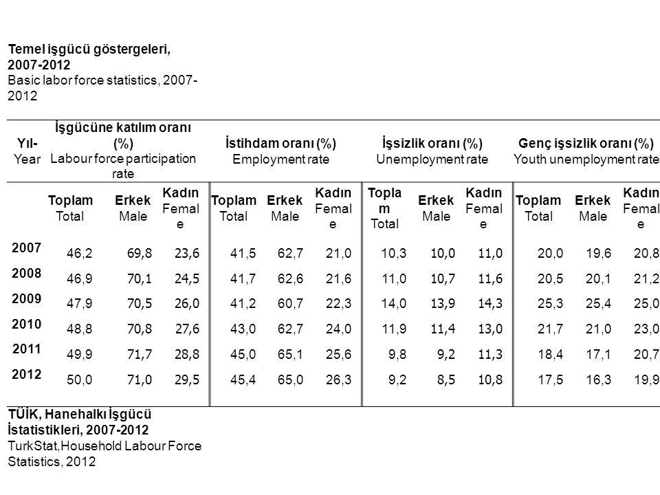 Temel işgücü göstergeleri, 2007-2012