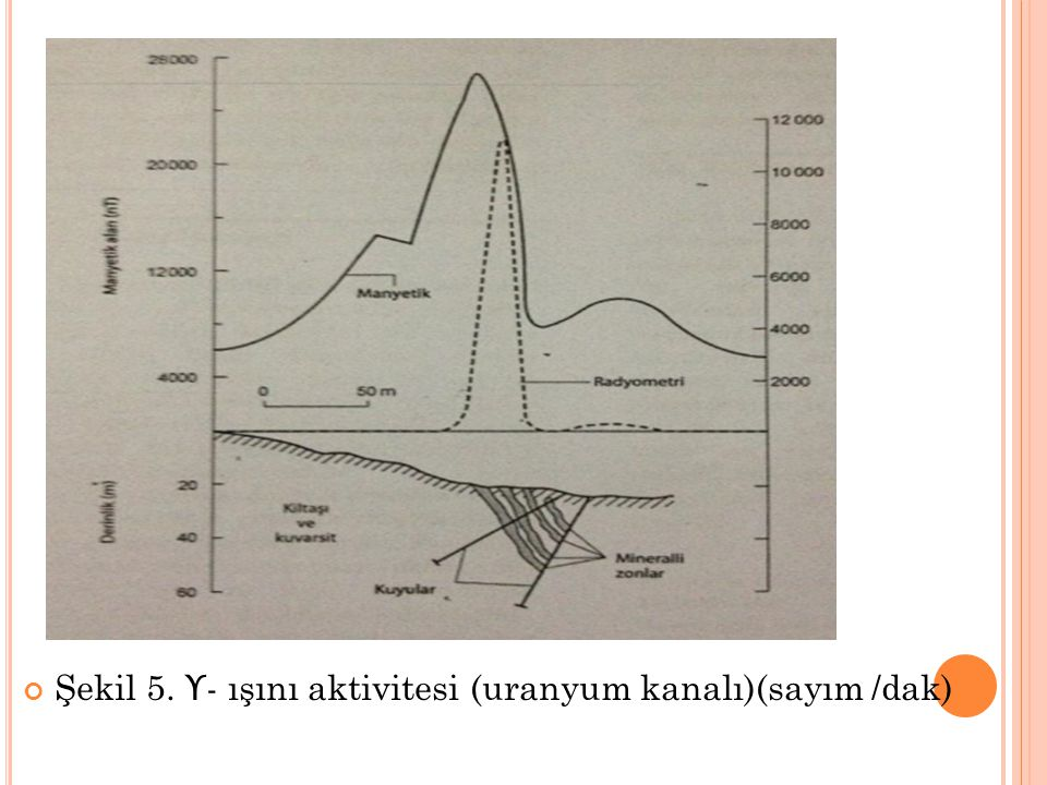 Şekil 5. ϒ- ışını aktivitesi (uranyum kanalı)(sayım /dak)