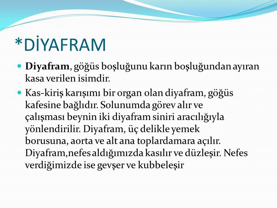 *DİYAFRAM Diyafram, göğüs boşluğunu karın boşluğundan ayıran kasa verilen isimdir.