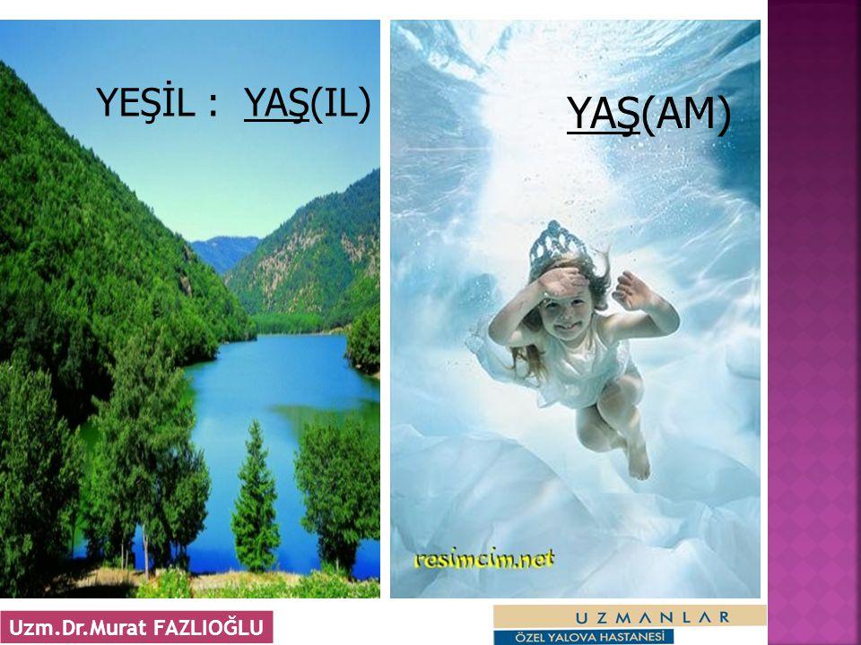 YEŞİL : YAŞ(IL) YAŞ(AM) Uzm.Dr.Murat FAZLIOĞLU