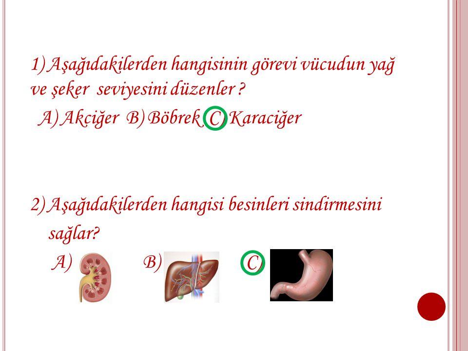 1) Aşağıdakilerden hangisinin görevi vücudun yağ ve şeker seviyesini düzenler .