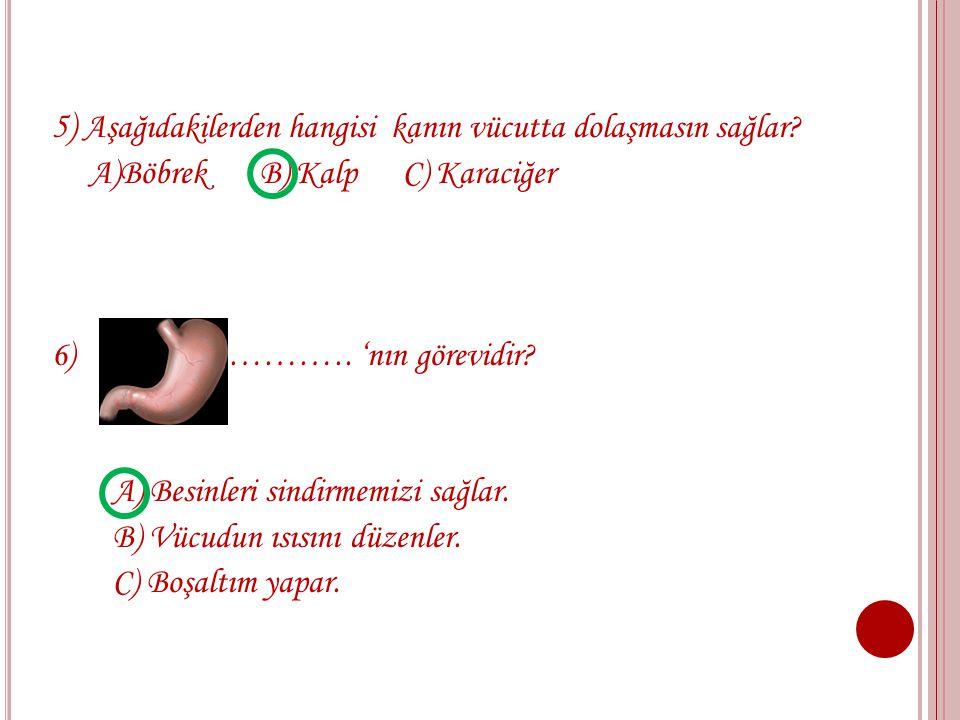 5) Aşağıdakilerden hangisi kanın vücutta dolaşmasın sağlar