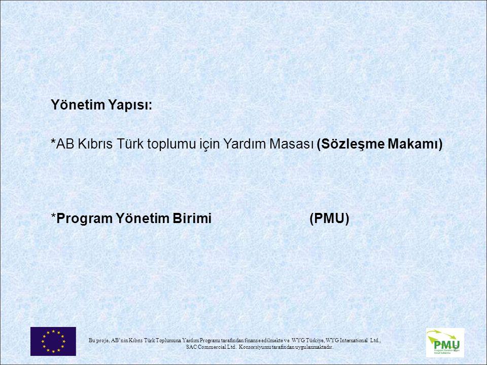 *AB Kıbrıs Türk toplumu için Yardım Masası (Sözleşme Makamı)