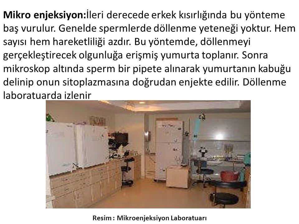Resim : Mikroenjeksiyon Laboratuarı