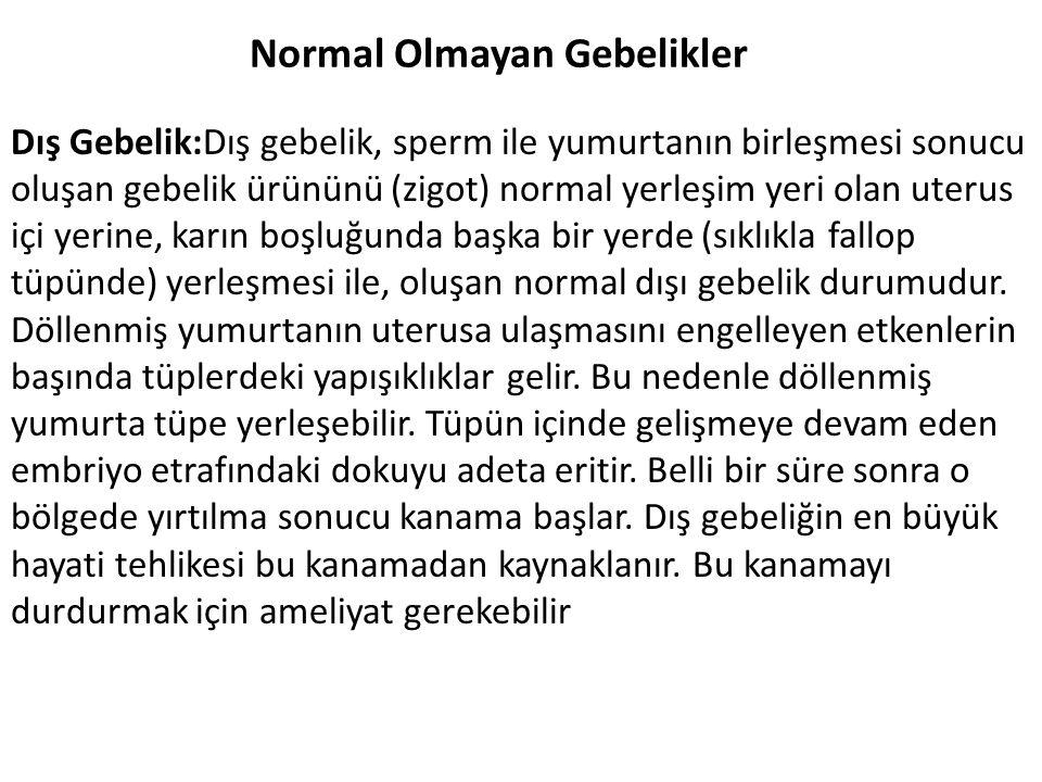 Normal Olmayan Gebelikler