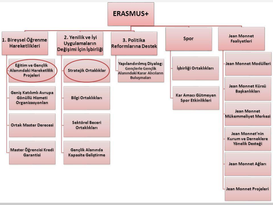 ERASMUS+ Spor 2. Yenilik ve İyi Uygulamaların Değişimi İçin İşbirliği