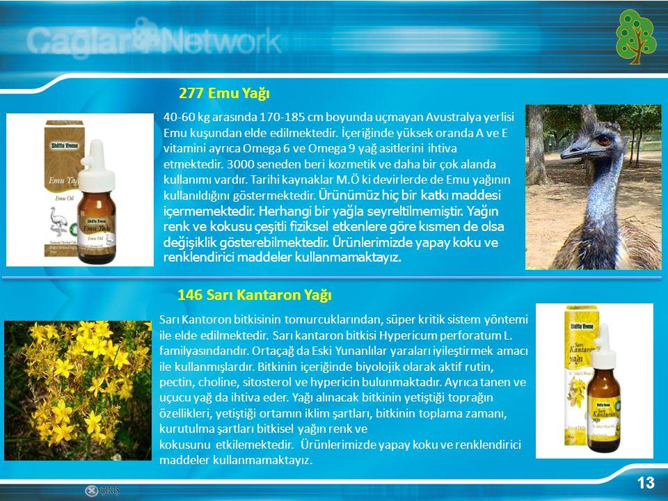 277 Emu Yağı 146 Sarı Kantaron Yağı 13