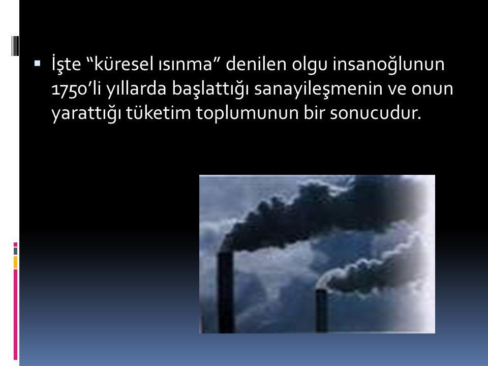 İşte küresel ısınma denilen olgu insanoğlunun 1750'li yıllarda başlattığı sanayileşmenin ve onun yarattığı tüketim toplumunun bir sonucudur.
