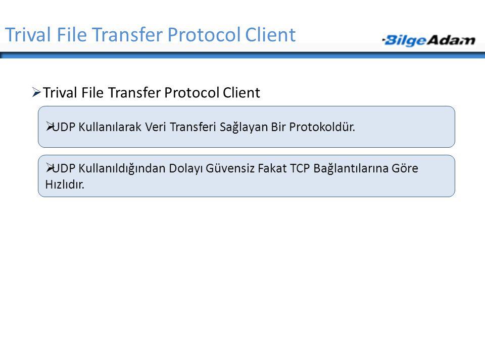 Trival File Transfer Protocol Client