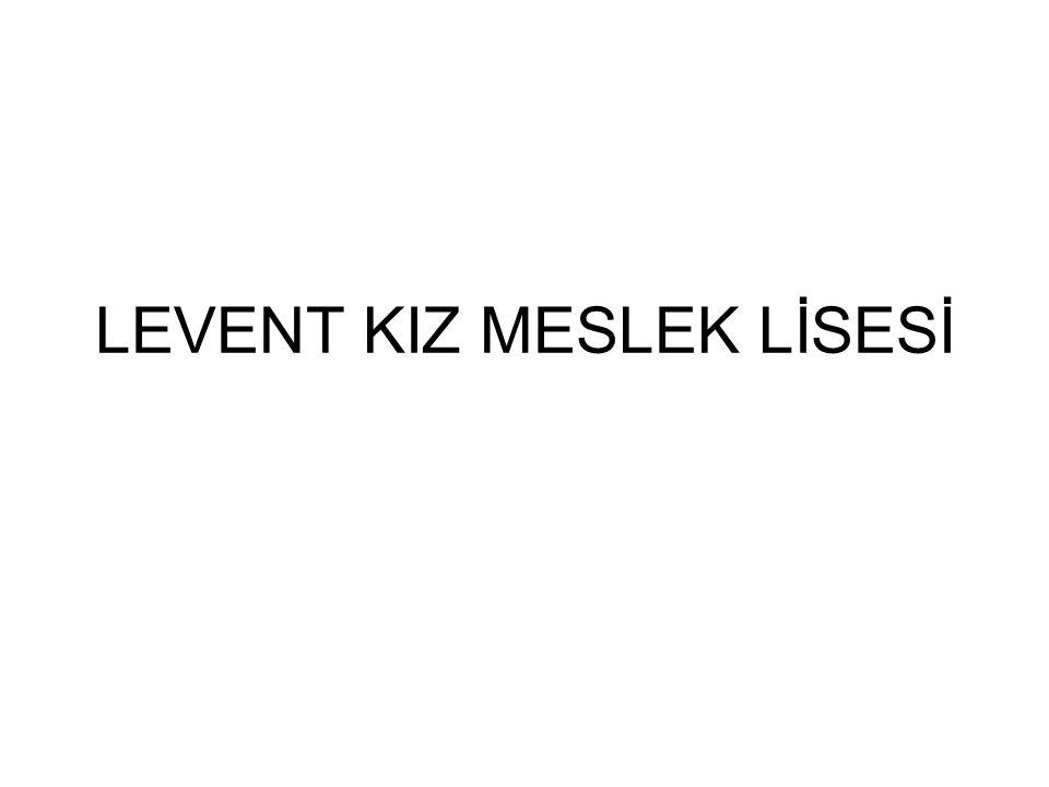 LEVENT KIZ MESLEK LİSESİ