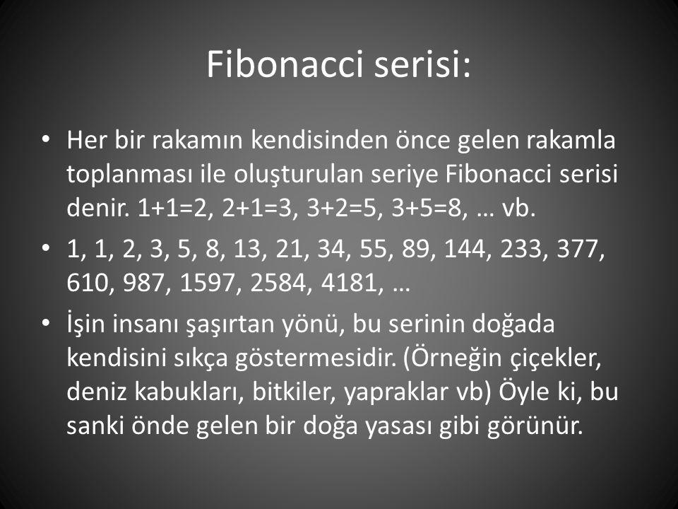 Fibonacci serisi: