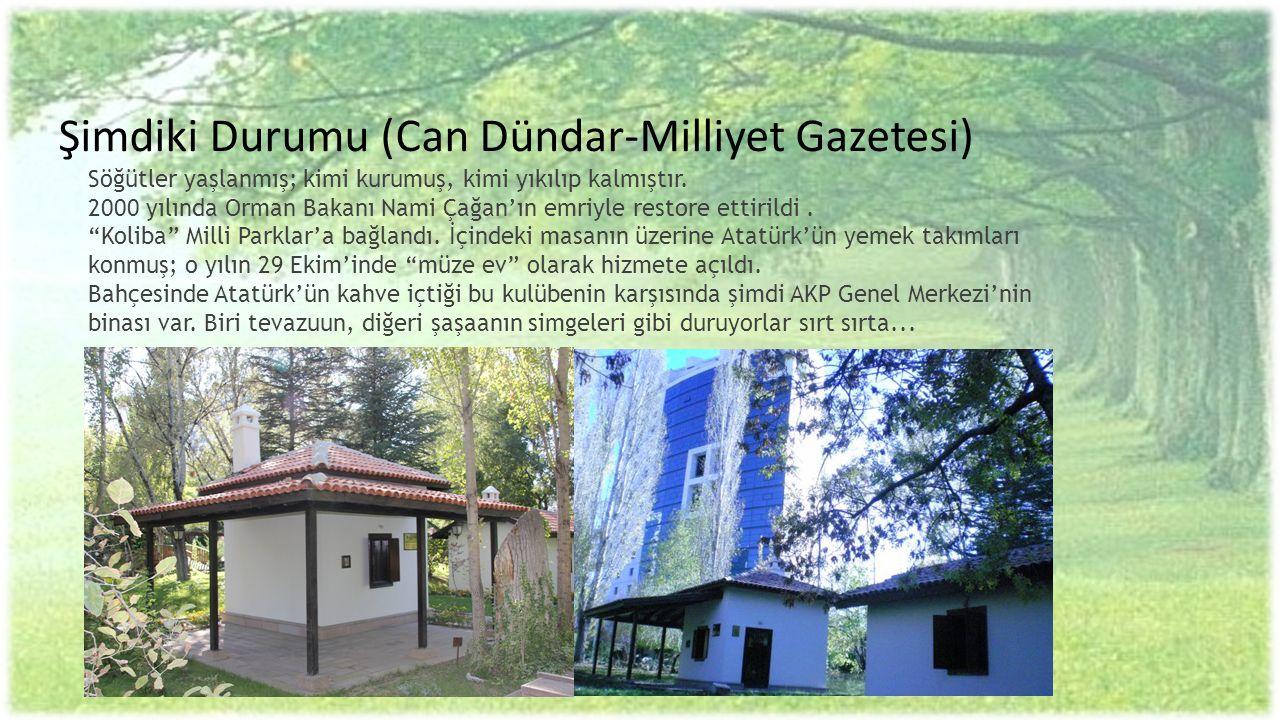 Şimdiki Durumu (Can Dündar-Milliyet Gazetesi) Söğütler yaşlanmış; kimi kurumuş, kimi yıkılıp kalmıştır. 2000 yılında Orman Bakanı Nami Çağan'ın emriyle restore ettirildi .