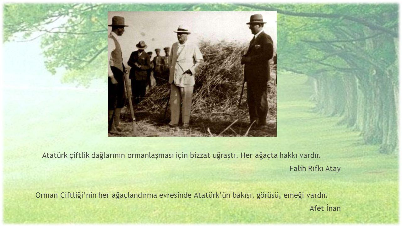 Atatürk çiftlik dağlarının ormanlaşması için bizzat uğraştı