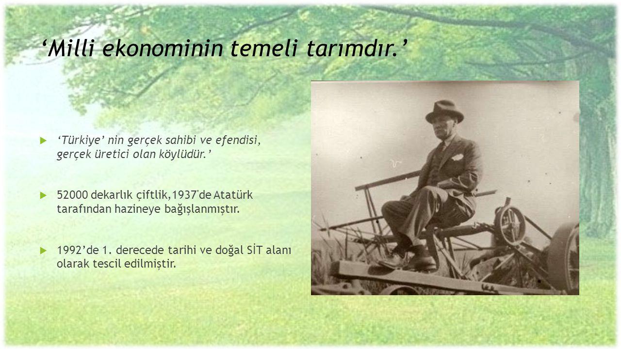 'Milli ekonominin temeli tarımdır.'