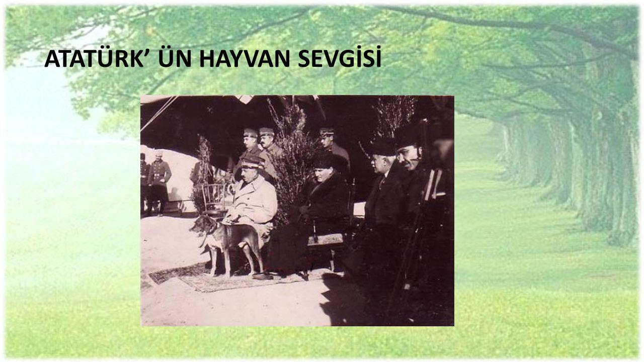 ATATÜRK' ÜN HAYVAN SEVGİSİ