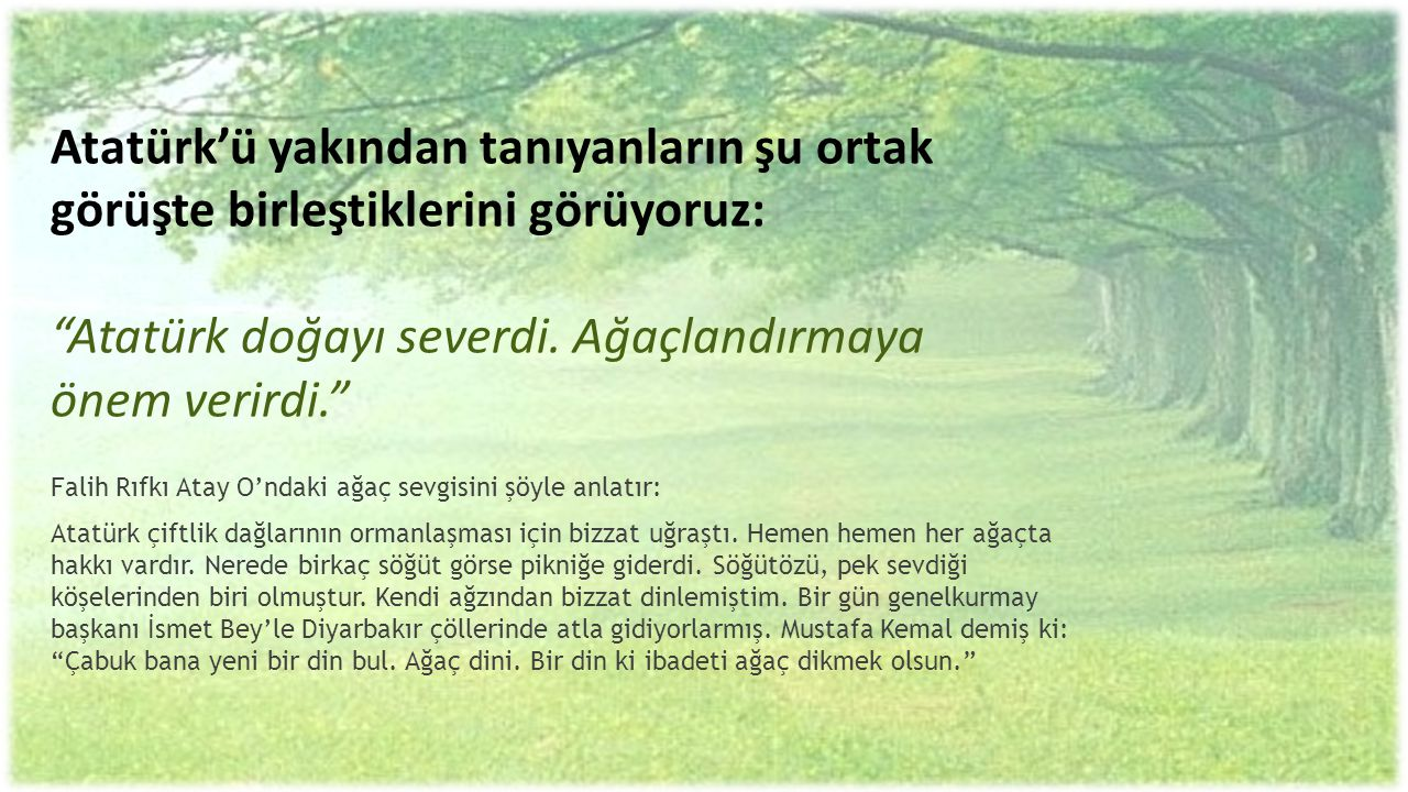 Atatürk'ü yakından tanıyanların şu ortak görüşte birleştiklerini görüyoruz: Atatürk doğayı severdi. Ağaçlandırmaya önem verirdi.