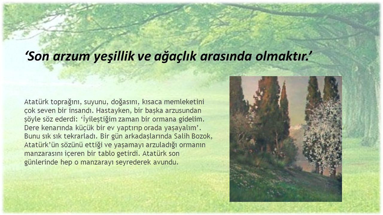 'Son arzum yeşillik ve ağaçlık arasında olmaktır.'