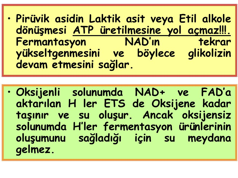Pirüvik asidin Laktik asit veya Etil alkole dönüşmesi ATP üretilmesine yol açmaz!!!. Fermantasyon NAD'ın tekrar yükseltgenmesini ve böylece glikolizin devam etmesini sağlar.