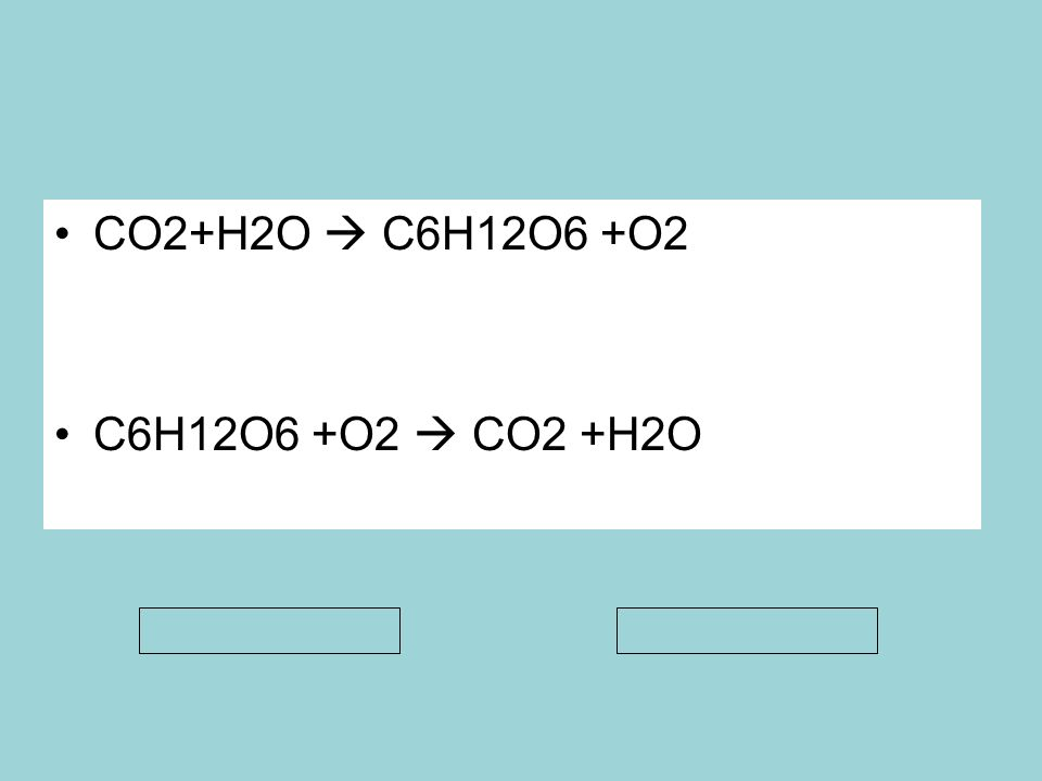CO2+H2O  C6H12O6 +O2 C6H12O6 +O2  CO2 +H2O Anabolizma Katabolizma