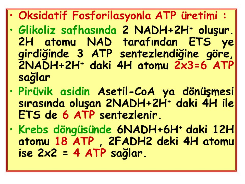 Oksidatif Fosforilasyonla ATP üretimi :
