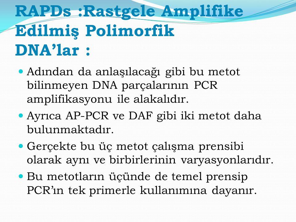 RAPDs :Rastgele Amplifike Edilmiş Polimorfik DNA'lar :