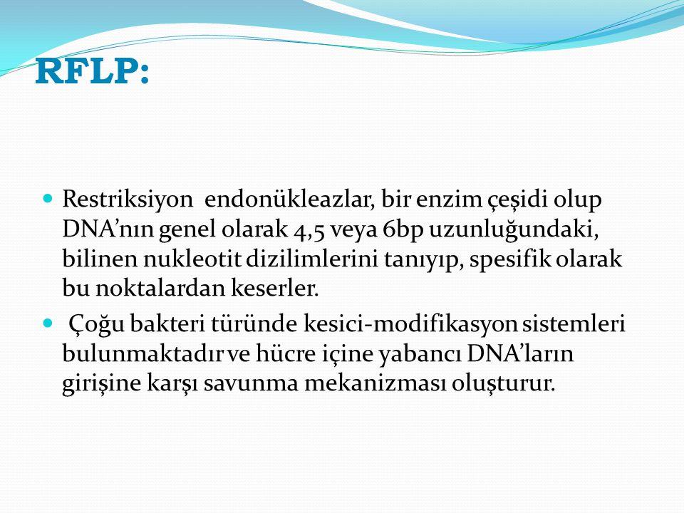 RFLP: