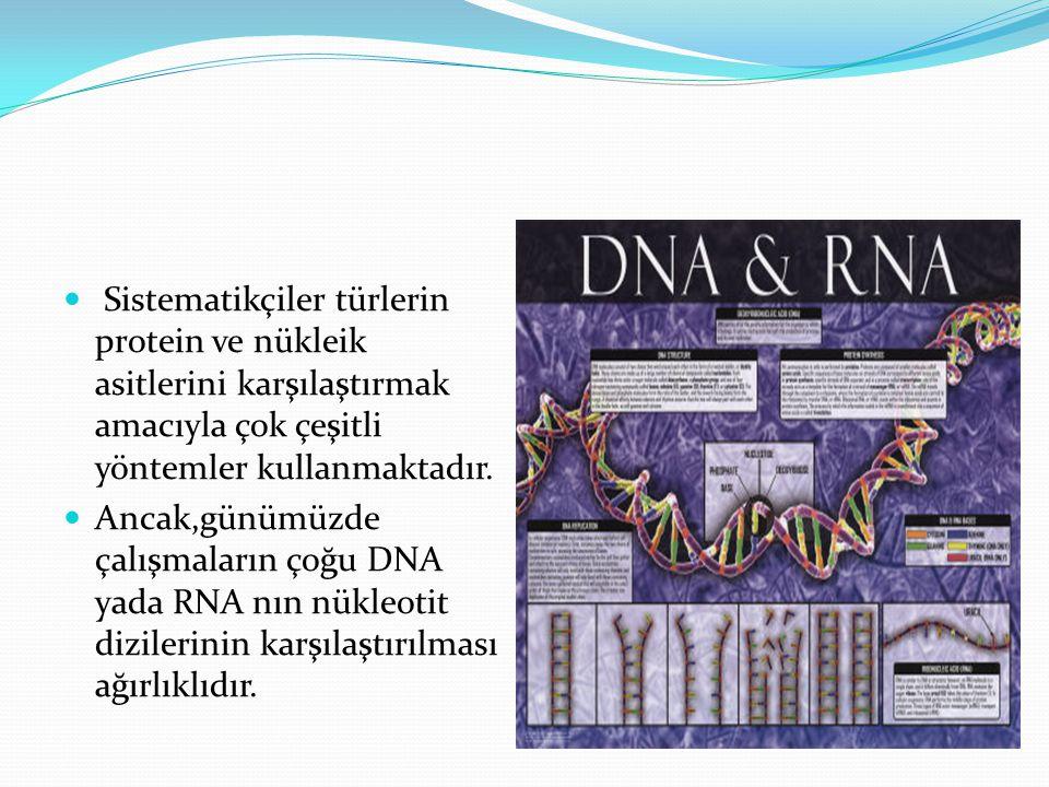 Sistematikçiler türlerin protein ve nükleik asitlerini karşılaştırmak amacıyla çok çeşitli yöntemler kullanmaktadır.